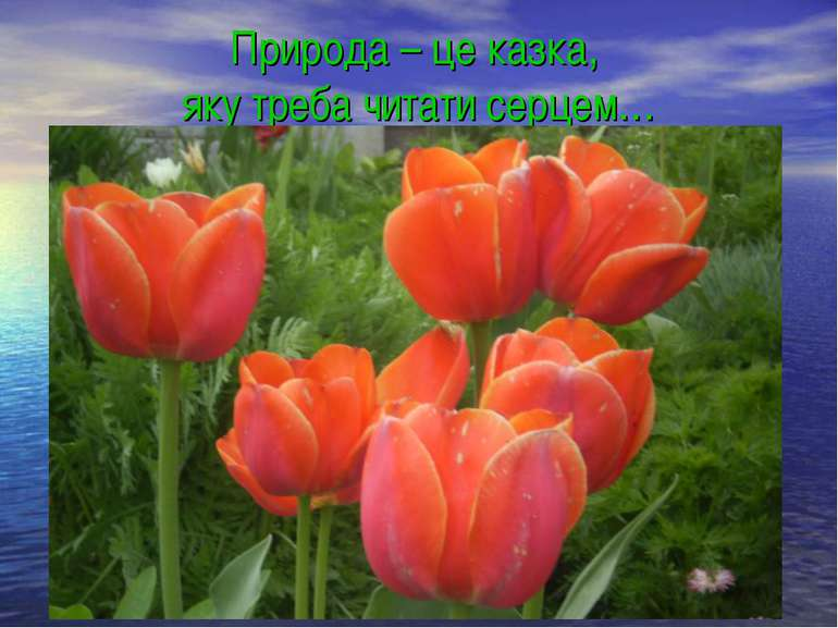 Природа – це казка, яку треба читати серцем…