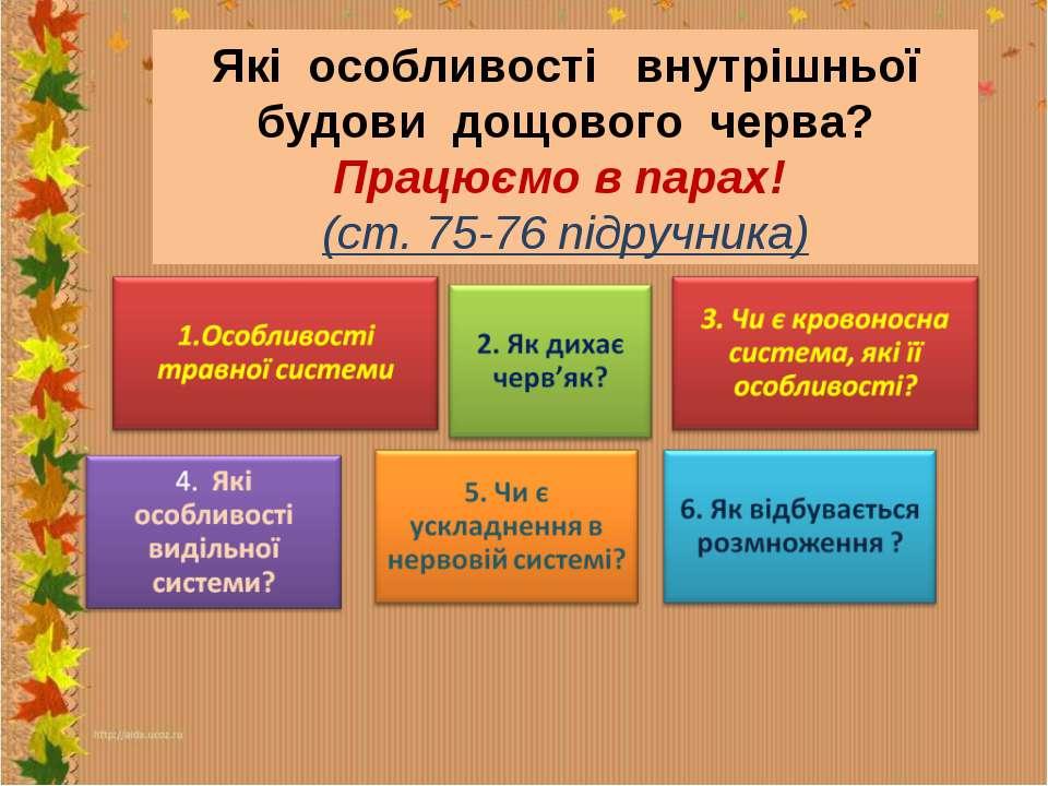 Які особливості внутрішньої будови дощового черва? Працюємо в парах! (ст. 75-...