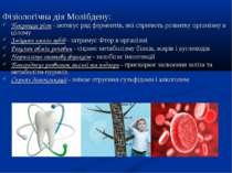 Фізіологічна дія Молібдену: Покращує ріст - активує ряд ферментів, які сприяю...