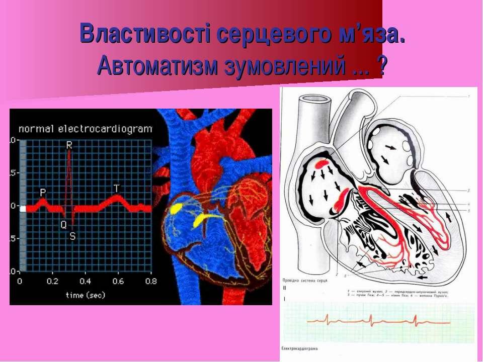 Властивості серцевого м'яза. Автоматизм зумовлений ... ?