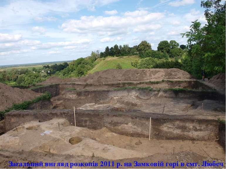 Загальний вигляд розкопів 2011 р. на Замковій горі в смт. Любеч