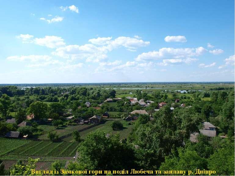 Вигляд із Замкової гори на поділ Любеча та заплаву р. Дніпро
