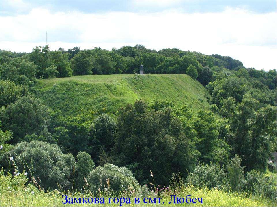Замкова гора в смт. Любеч