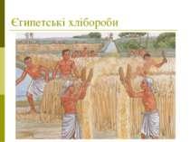 Єгипетські хлібороби