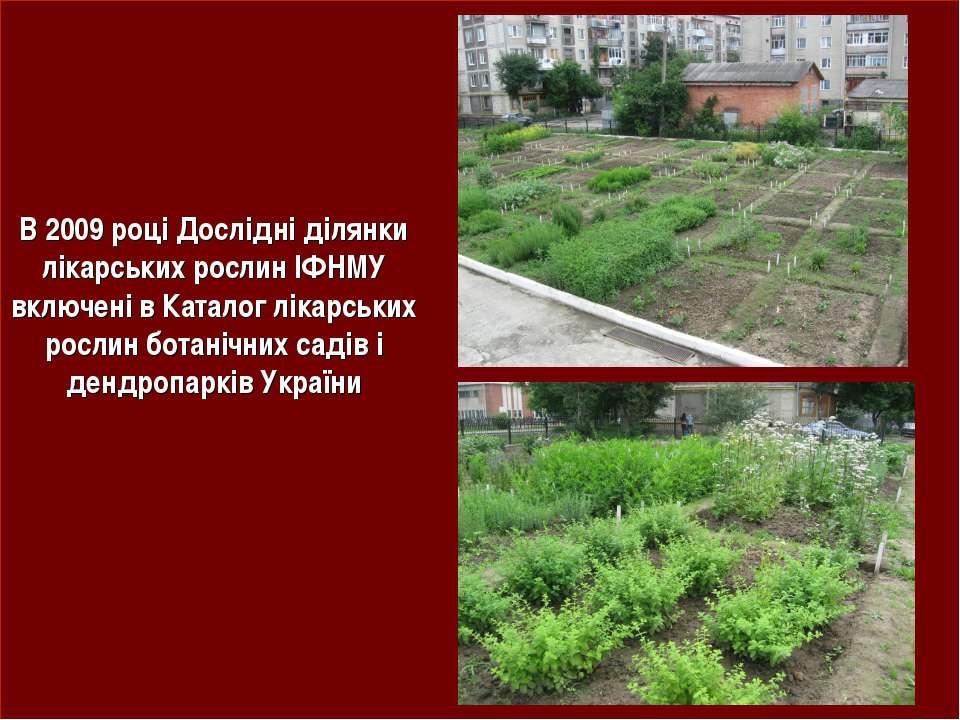 В 2009 році Дослідні ділянки лікарських рослин ІФНМУ включені в Каталог лікар...