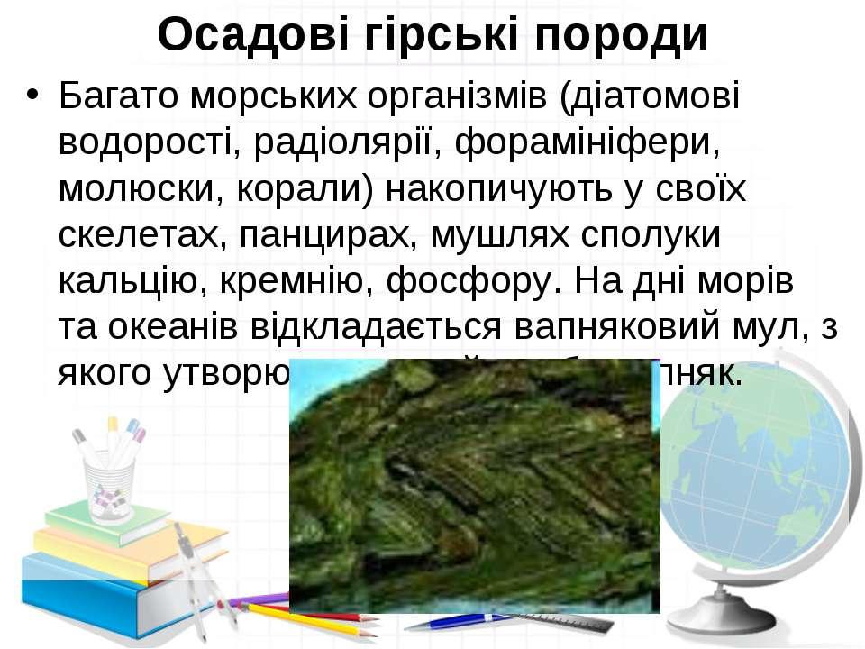 Осадові гірські породи Багато морських організмів (діатомові водорості, радіо...