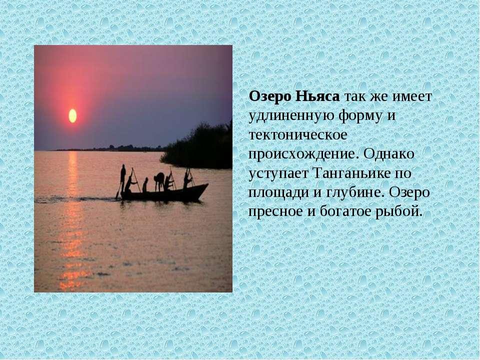 Озеро Ньяса так же имеет удлиненную форму и тектоническое происхождение. Одна...