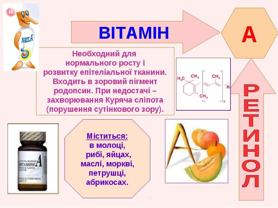 Витамин В12 и Реферат. на тему