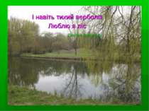 І навіть тихий верболіз Люблю я ліс Платон Воронько