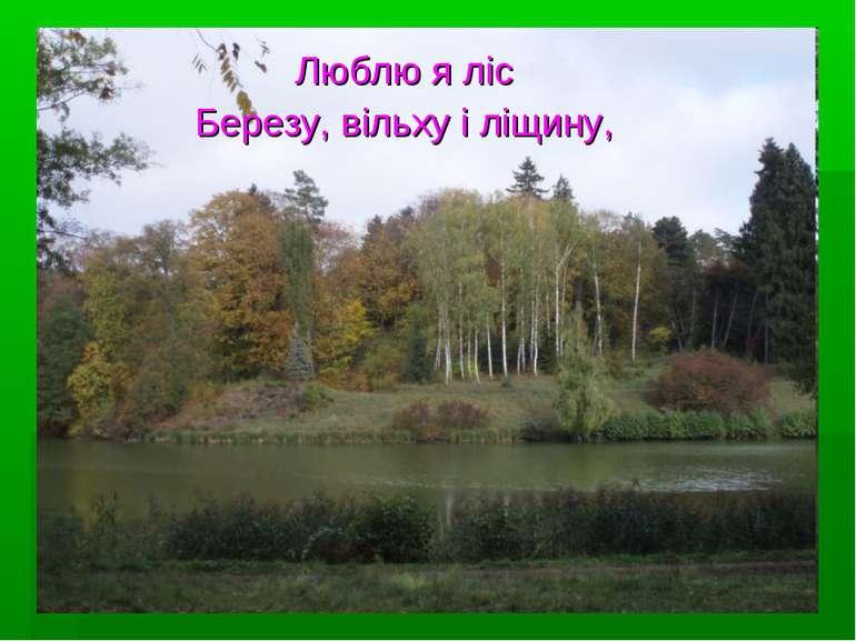 Люблю я ліс Березу, вільху і ліщину,