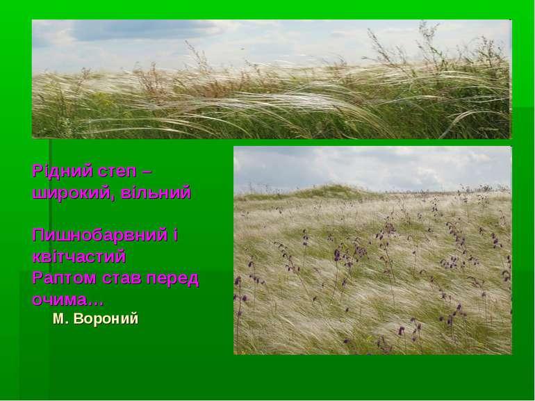 Рідний степ – широкий, вільний Пишнобарвний і квітчастий Раптом став перед оч...