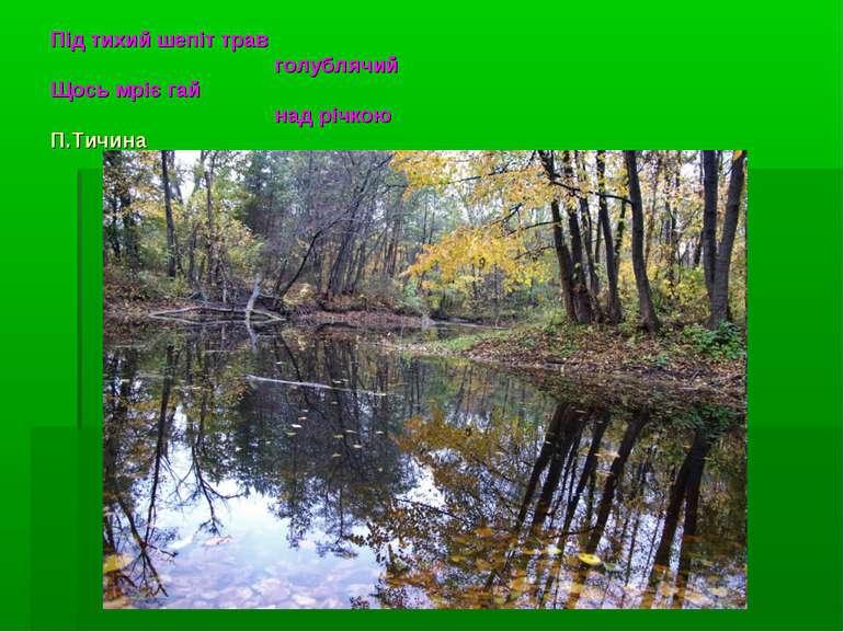 Під тихий шепіт трав голублячий Щось мріє гай над річкою П.Тичина