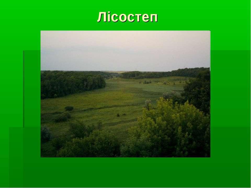 Лісостеп