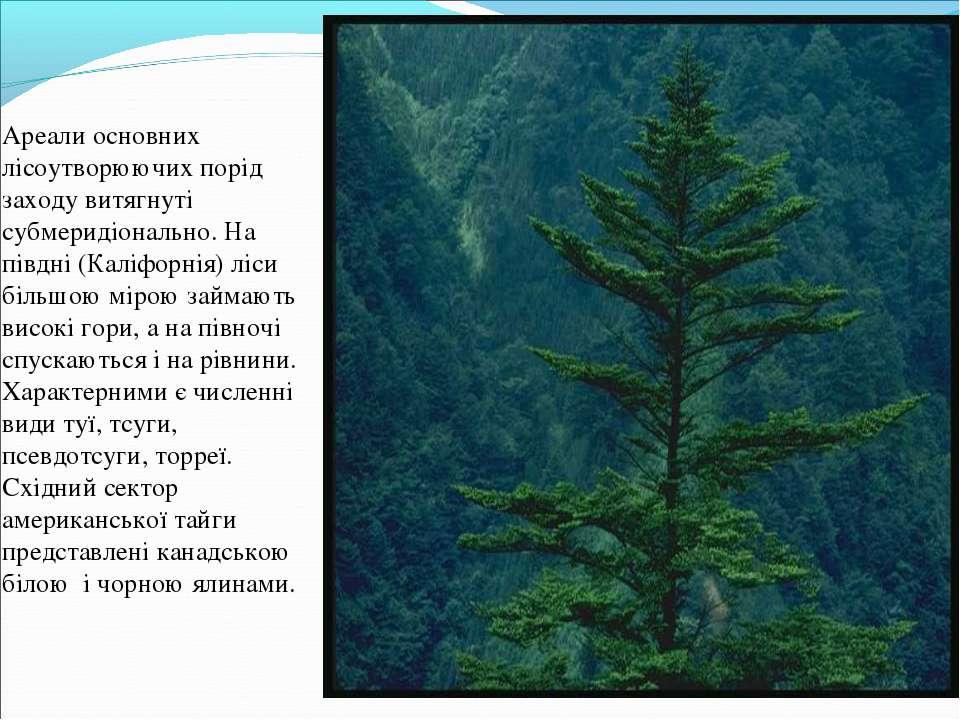 Ареали основних лісоутворюючих порід заходу витягнуті субмеридіонально. На пі...