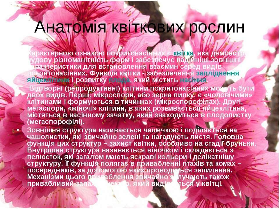 Анатомія квіткових рослин Характерною ознакою покритонасінних є квітка, яка д...