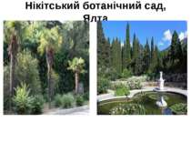 Нікітський ботанічний сад, Ялта