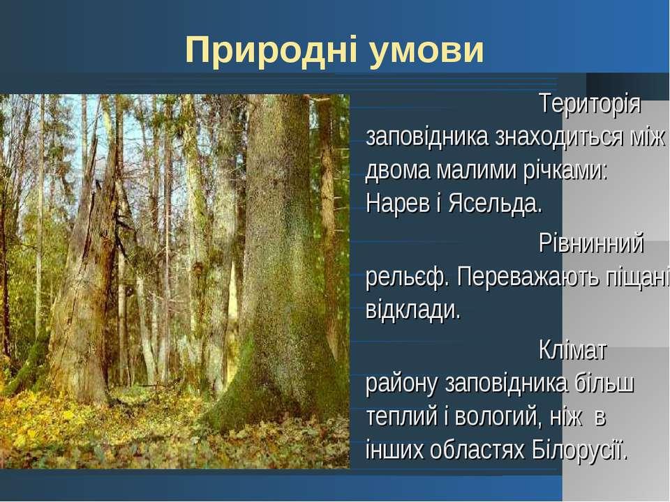 Територія заповідника знаходиться між двома малими річками: Нарев і Ясельда. ...