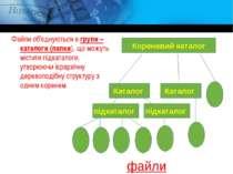 Файли об'єднуються в групи – каталоги (папки), що можуть містити підкаталоги,...