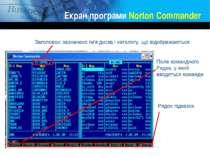 Екран програми Norton Commander Заголовок: зазначено ім'я диска і каталогу, щ...
