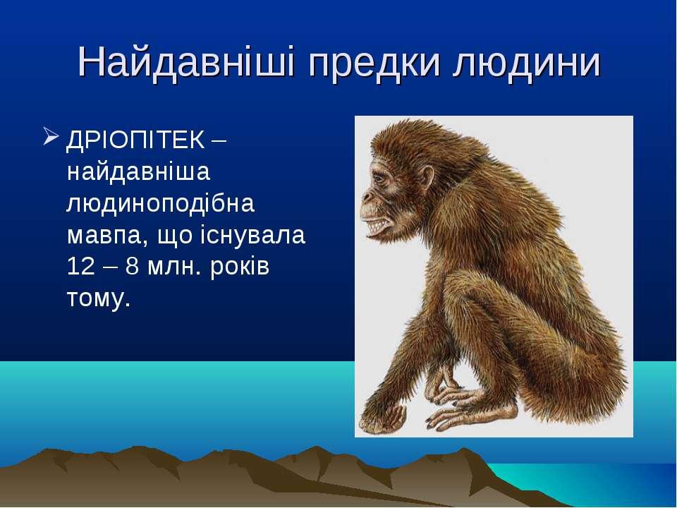 Найдавніші предки людини ДРІОПІТЕК – найдавніша людиноподібна мавпа, що існув...