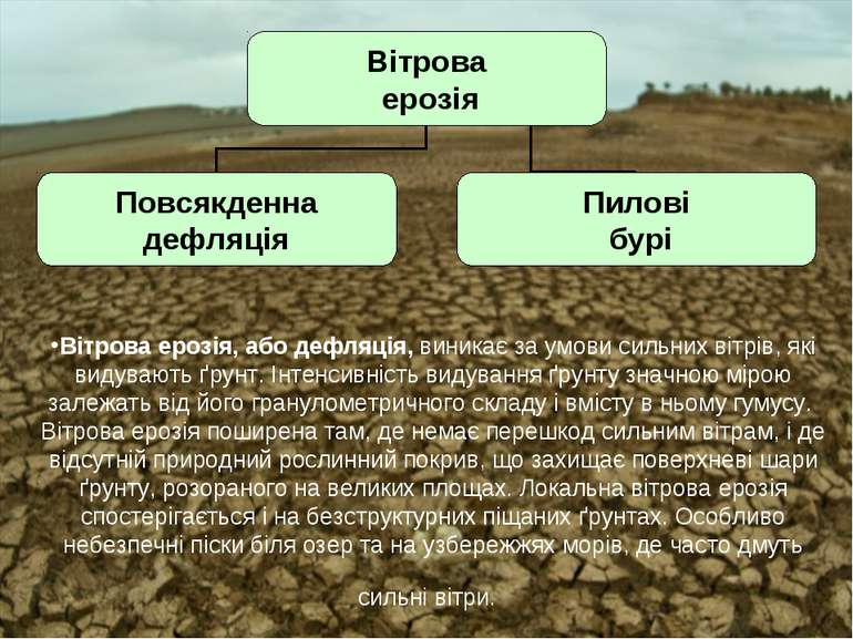 Вітрова ерозія, або дефляція, виникає за умови сильних вітрів, які видувають ...