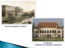 Львівська академія ветеринарної медицини Технічна академія у Львові