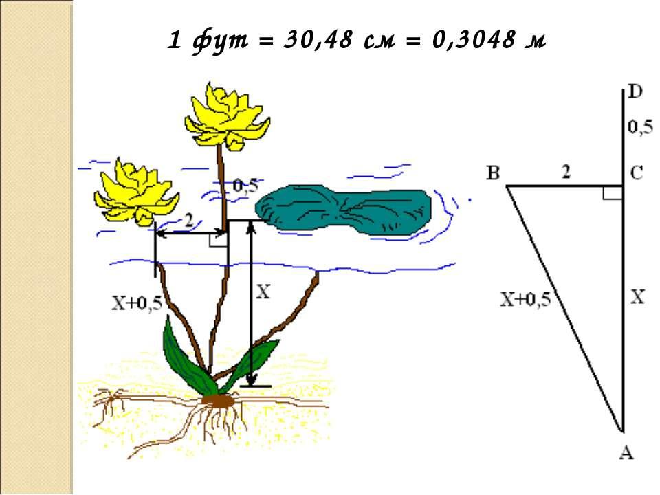 1 фут = 30,48 см = 0,3048 м