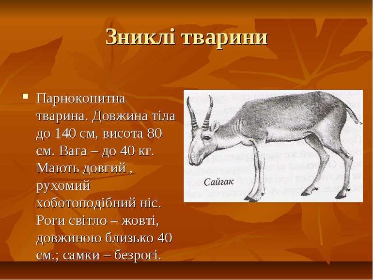 Зниклі тварини Парнокопитна тварина. Довжина тіла до 140 см, висота 80 см. Ва...