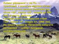 Клімат рівнинної ч. на Пн. — тропічний, з вологим жарким літом і теплою сухою...