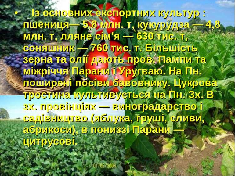 Із основних експортних культур : пшениця— 5,8 млн. т, кукурудза — 4,8 млн. т,...
