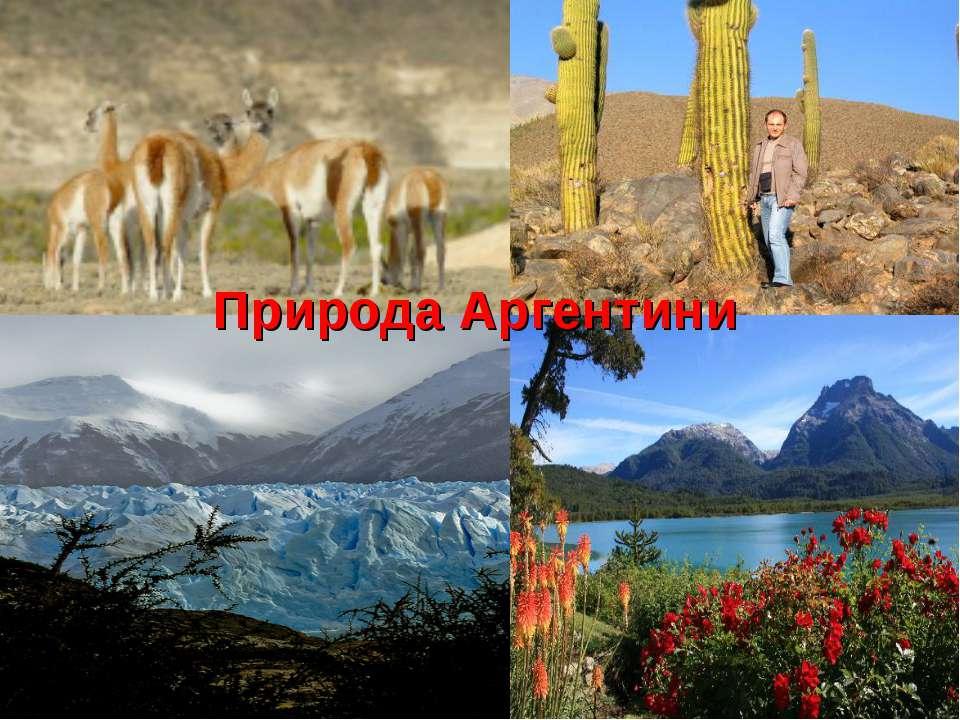 Природа Аргентини