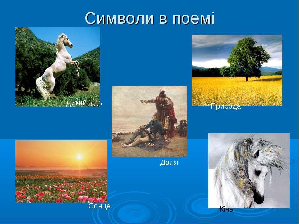 Символи в поемі Кінь Дикий кінь Природа Сонце Доля