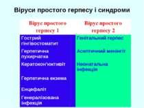 Віруси простого герпесу і синдроми Вірус простого герпесу 1 Вірус простого ге...