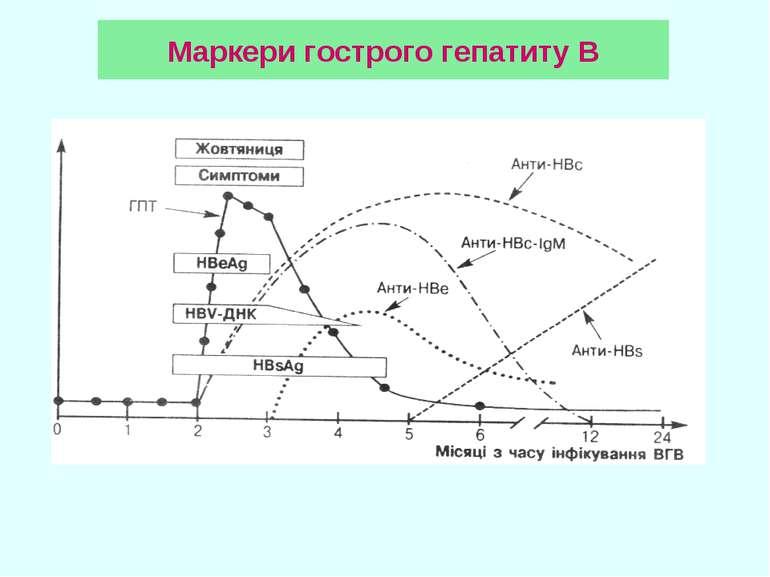 Маркери гострого гепатиту В