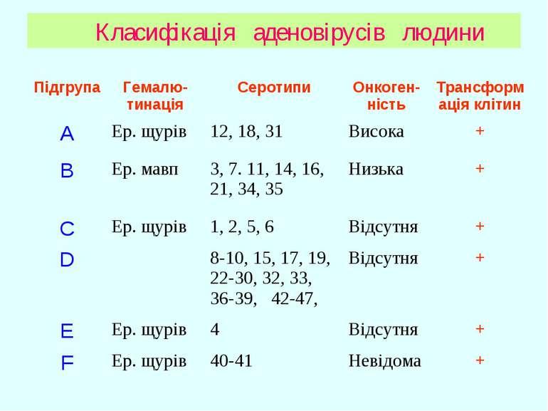 Класифікація аденовірусів людини Підгрупа Гемалю-тинація Серотипи Онкоген-ніс...