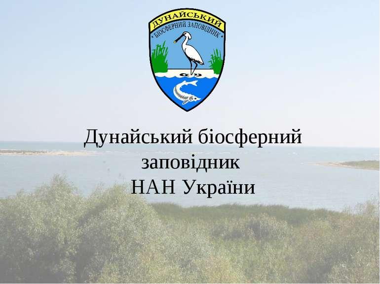 Дунайський біосферний заповідник НАН України