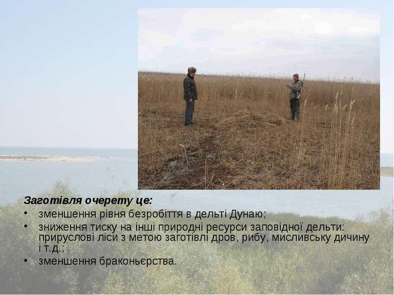 Заготівля очерету це: зменшення рівня безробіття в дельті Дунаю; зниження тис...