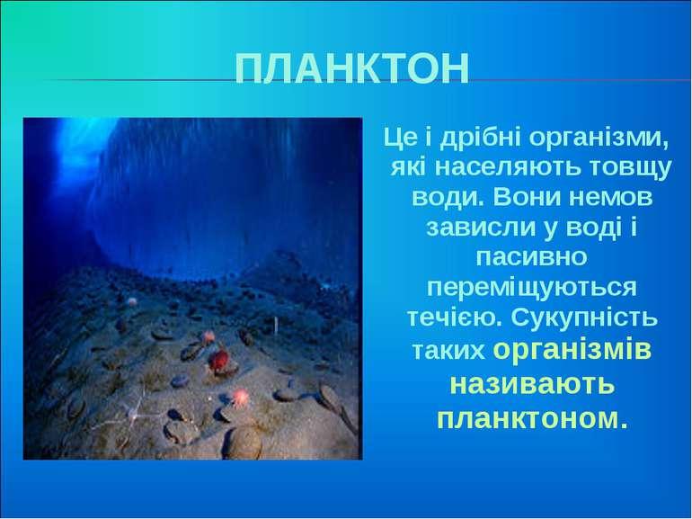 ПЛАНКТОН Це і дрібні організми, які населяють товщу води. Вони немов зависли ...