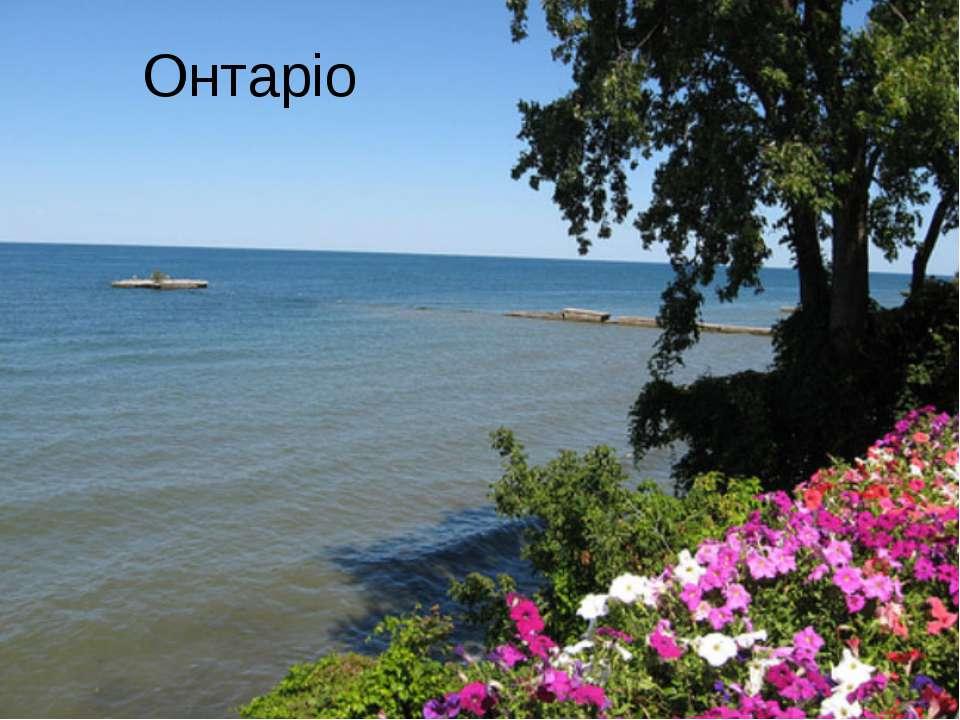 Онтаріо