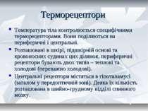 Терморецептори Температура тіла контролюється специфічними терморецепторами. ...
