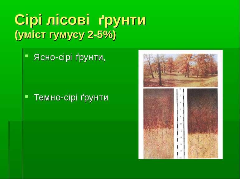 Сірі лісові ґрунти (уміст гумусу 2-5%) Ясно-сірі ґрунти, Темно-сірі ґрунти