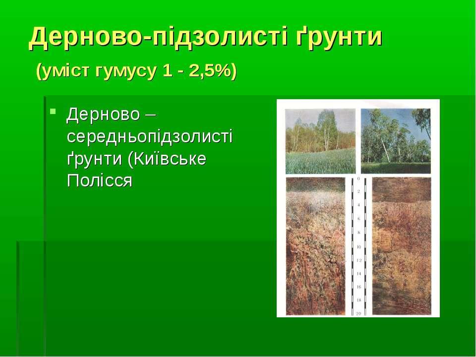 Дерново-підзолисті ґрунти (уміст гумусу 1 - 2,5%) Дерново –середньопідзолисті...