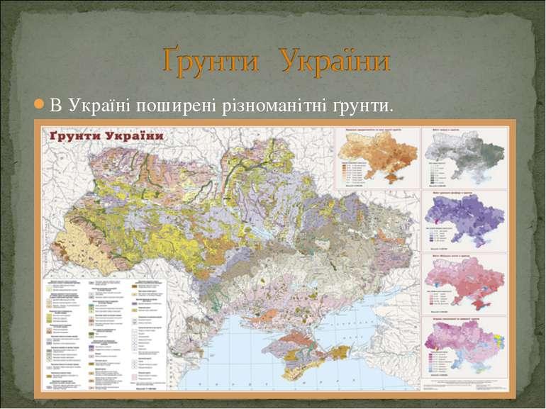 В Україні поширені різноманітні ґрунти.