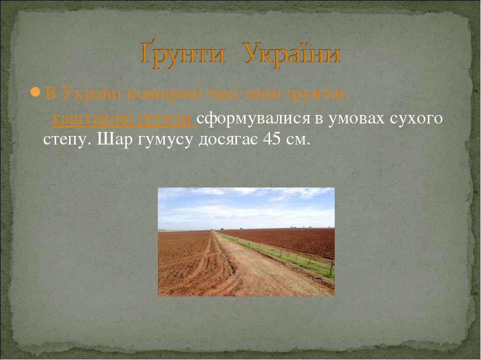 В Україні поширені такі типи ґрунтів: каштанові ґрунти сформувалися в умовах ...
