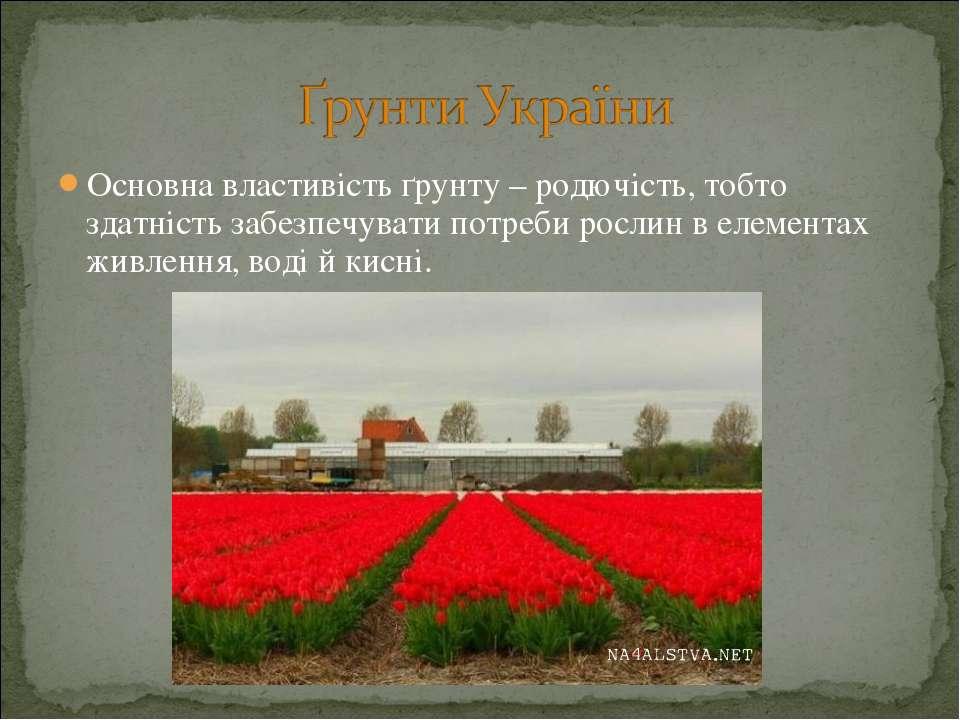 Основна властивість ґрунту – родючість, тобто здатність забезпечувати потреби...