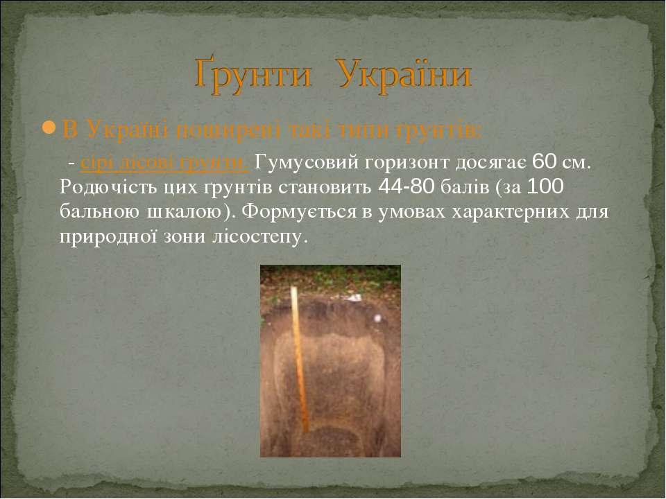 В Україні поширені такі типи ґрунтів: - сірі лісові ґрунти. Гумусовий горизон...
