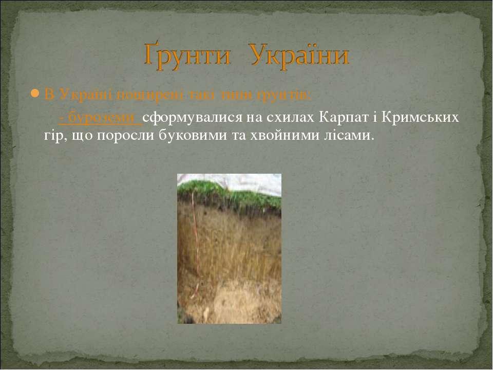 В Україні поширені такі типи ґрунтів: - буроземи сформувалися на схилах Карпа...