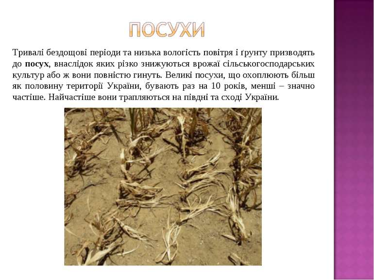 Тривалі бездощові періоди та низька вологість повітря і ґрунту призводять до ...