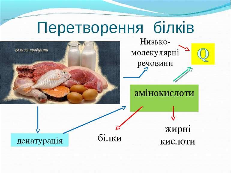 Перетворення білків амінокислоти білки білки жирні кислоти денатурація Низько...
