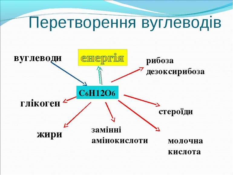 Перетворення вуглеводів вуглеводи С6Н12О6 глікоген рибоза дезоксирибоза жири ...
